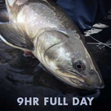 9 Hour Full Day Fishing Trips